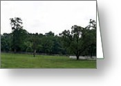 County Jail Greeting Cards - Historic Appomattox Panorama  Greeting Card by Teresa Mucha