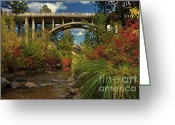 Lassen Greeting Cards - Historic Highway Bridge - Susan River Greeting Card by James Eddy