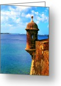 Puerto Rico Greeting Cards - Historic San Juan Fort Greeting Card by Perry Webster