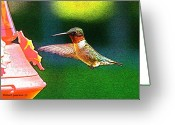 Wild-life Greeting Cards - Hmmm Greeting Card by Robert Pearson