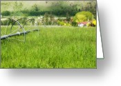 Kamloops Greeting Cards - Hobby Farm Greeting Card by Peter Olsen