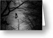 Winter Greeting Cards - Hockey Silhouette Greeting Card by Andrew Fare