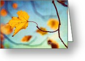 Turning Leaves Greeting Cards - Holding On Greeting Card by Darren Fisher