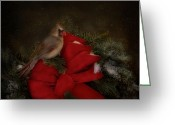 Cardinal Greeting Cards - Holiday Visitor Greeting Card by Robin-Lee Vieira