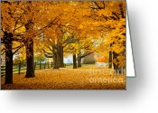 October Greeting Cards - Hollis Farm Greeting Card by Susan Cole Kelly