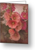 Hollyhock Greeting Cards - Holly Sunday Greeting Card by Richard Cummings