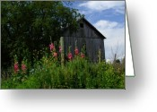 Indiana Flowers Greeting Cards - HollyHock Barn Greeting Card by Michael L Kimble