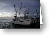 N Taylor Greeting Cards - Home Port Greeting Card by N Taylor