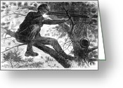 Winslow Homer Greeting Cards - Homer: Civil War, 1862 Greeting Card by Granger