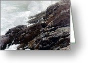 Homer Greeting Cards - Homer: High Cliff, 1894 Greeting Card by Granger