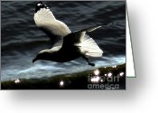 Seabirds Digital Art Greeting Cards - Homeward Greeting Card by Dale   Ford