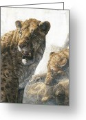 Strangling Greeting Cards - Homotherium Scimitar Cats Greeting Card by Kennis And Kennismsf