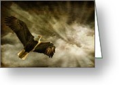 Bald Eagle Digital Art Greeting Cards - Honor Bound Greeting Card by Lois Bryan