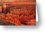 Bryce Canyon Greeting Cards - Hoodoos Basin Greeting Card by Robert Bales