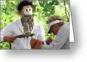 Owl Photography Greeting Cards - Hoooo Am I Greeting Card by James Steele