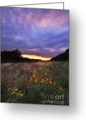 Indiana Autumn Photo Greeting Cards - Hoosier Sunset - D007743 Greeting Card by Daniel Dempster