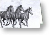 Wild Horse Drawings Greeting Cards - Hope never dies Greeting Card by Kate Black