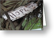 Intercoastal Greeting Cards - Hope Greeting Card by Steven  Michael
