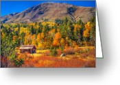 Red Fall Colors Greeting Cards - Hope Valley California Rustic Barn Greeting Card by Scott McGuire