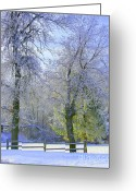 Winter Trees Greeting Cards - Hoping for Green Greeting Card by Julie Lueders 