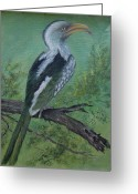 Hornbill Painting Greeting Cards - Hornbill Greeting Card by Rita Palm