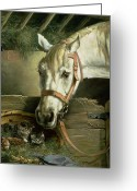Hay Painting Greeting Cards - Horse and kittens Greeting Card by Moritz Muller