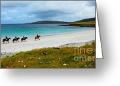 Colour Image Greeting Cards - Horse and riders on the beach  Greeting Card by Gabriela Insuratelu