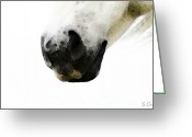 White White Horse Digital Art Greeting Cards - Horse Art - Sugar Lips Greeting Card by Sharon Cummings