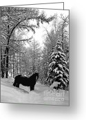 Scenary Greeting Cards - Horse Greeting Card by Elena Filatova