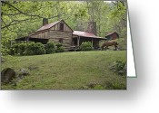 Log Cabins Photo Greeting Cards - Horse Grazing In The Yard Of A Mountain Greeting Card by Greg Dale