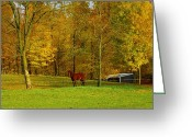 Ohio Country Greeting Cards - Horse In Autumn Greeting Card by Kathleen Struckle