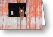 Quarter Horse Greeting Cards - Horse in the Barn Greeting Card by Laurinda Bowling