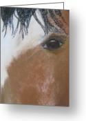 Horses Pastels Greeting Cards - Horse Looking at You Greeting Card by Jan Rooney