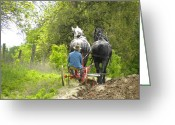 Plowing Greeting Cards - Horse Power Greeting Card by Peggy  McDonald