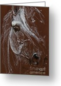 Horse Portrait Pastels Greeting Cards - Horse Quick  Sketch Soft And Oil Pastel  Greeting Card by Angel  Tarantella