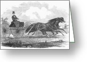 Carriage Team Greeting Cards - Horse Racing, 1862 Greeting Card by Granger