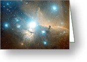 Horsehead Greeting Cards - Horsehead And Flame Nebulae Greeting Card by Davide De Martin