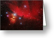 Horsehead Greeting Cards - Horsehead And Flame Nebulae Greeting Card by John Sanford