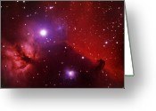 Glowing Star Greeting Cards - Horsehead Nebula In The Belt Of Orion Greeting Card by A. V. Ley