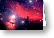 Horsehead Greeting Cards - Horsehead Nebula Panorama Greeting Card by Jim DeLillo