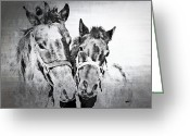 Horse Posters Greeting Cards - Horses By The Road Greeting Card by Kathy Jennings