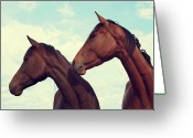 Two By Two Greeting Cards - Horses Looking Sideways Greeting Card by Tracey Barrow Photography