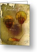 Sea Life Mixed Media Greeting Cards - Horseshoe Crab Greeting Card by Paul Gaj