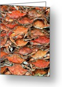 Row Greeting Cards - Hot Crabs Greeting Card by Sky Noir Photography by Bill Dickinson