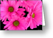 Pink Flower Prints Digital Art Greeting Cards - Hot Pink Flowers Greeting Card by Cindi Lane