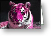 Fur Stripes Greeting Cards - Hot pink Tiger Greeting Card by Rebecca Margraf