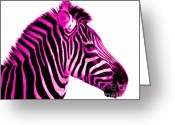 Vet Photo Greeting Cards - Hot Pink Zebra Greeting Card by Rebecca Margraf