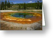 Volcanic Greeting Cards - Hot springs Yellowstone National Park Greeting Card by Garry Gay