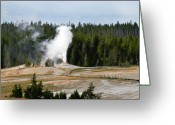Fumarole Greeting Cards - Hot Steam Dog Yellowstone National Park WY Greeting Card by Christine Till