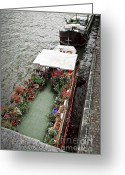 Visitor Greeting Cards - Houseboats in Paris Greeting Card by Elena Elisseeva